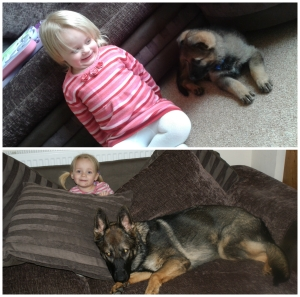 Lily and Unis, on the day we got her and in January 2013